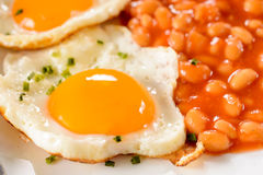 Yolk egg and bean Stock Photography