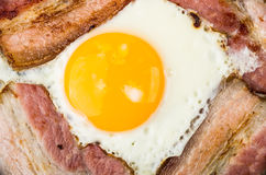 Yolk of egg and fried bacon close up Stock Image