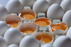Yolk among many white eggs Royalty Free Stock Photo