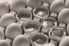 Yolk among many white eggs Royalty Free Stock Photography