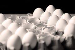 Yolk among many white eggs Stock Photos