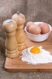 Yolk, ovos de galinhas da casa, sal e pimenta fotos de stock royalty free