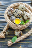 Yolk in the shell and quail eggs. Royalty Free Stock Photography