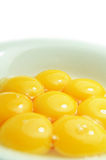 Yolks Royalty Free Stock Images