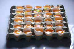 Yolks in a carton of eggs Royalty Free Stock Image