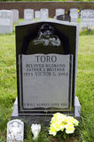 Yomo Toro Grave Royalty Free Stock Images