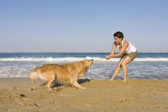 Yong girl playing with her dog Royalty Free Stock Photography