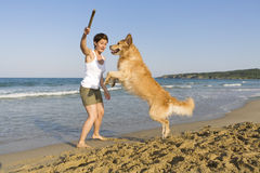 Yong girl playing with her dog Royalty Free Stock Photo