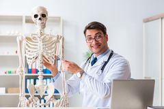 The yong male doctor with skeleton isolated on white. Yong male doctor with skeleton isolated on white Royalty Free Stock Images