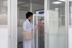 Yong student  in lab. Yong student  gets  culture cell bottle in university lab Stock Photography