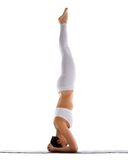 Yong woman exercise yoga supported headstand Stock Photos