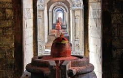 Yoni e Lingam in tempio di Pashupatinath immagine stock libera da diritti