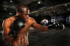 Yopung African American Boxer Royalty Free Stock Image