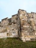 York är en walled stad som placeras på confluencen av floderna Ouse och Foss i norr Yorkshire, England Fotografering för Bildbyråer
