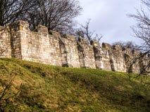 York är en walled stad som placeras på confluencen av floderna Ouse och Foss i norr Yorkshire, England Royaltyfri Foto