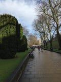 York efter regn i Januari 2018 royaltyfri bild