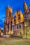York famoso Minster fotografia stock libera da diritti