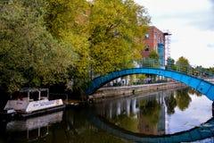 York - flod Foss royaltyfria bilder