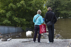 York Floods - Sept.2012 - UK. A road disappears underwater as the River Ouse floods the streets of central York in the United Kingdom.  September 2012. Great Royalty Free Stock Images