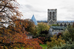 York Minster Fotografia Stock