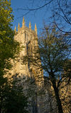 York minster. From the gardens surrounding the west side of the building Royalty Free Stock Photo