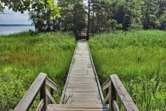 York River State Park fossil Beach trail Virginia. A wooden boardwalk elevates travelers over wetlands at York State Park on the Mattiponi Tail stock image