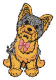 Yorkie with a bow Royalty Free Stock Image
