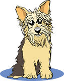 Yorkie cartoon Stock Photos