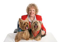 Yorkie Twins & Owner Stock Photo