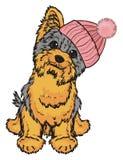 Yorkie in warm hat. Happy yorkshire terrier in pinjj warm winter hat sit Royalty Free Stock Image