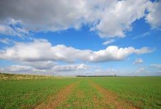 Yorkshire-Ackerland Stockfotografie