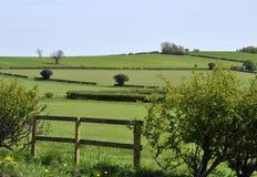 Yorkshire-Ackerland Lizenzfreie Stockfotografie