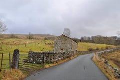 Yorkshire cowgill för lakeområde Arkivbilder