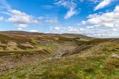 Yorkshire dalar nära kapitulerar bron, North Yorkshire, UK Royaltyfri Fotografi
