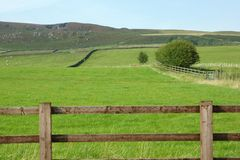 Yorkshire Dales farmland Royalty Free Stock Image