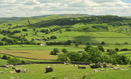Yorkshire Dales, fields and meadows Royalty Free Stock Photo