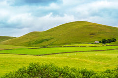Yorkshire Dales, landscape in Summer, England Stock Photography