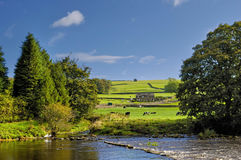 Yorkshire Dales National Park. Scenic view of river Wharfe with Yorkshire Dales National Park in background, North Yorkshire, England Royalty Free Stock Photos