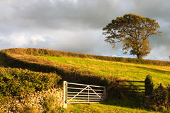 Yorkshire Dales National Park. Typical landscape in Yorkshire Dales National Park in Great Britain Stock Photos