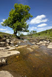Yorkshire Dales National Park -  England. The River Wharf in Langstrothdale in the Yorkshire Dales National Park in northern England Stock Images