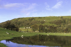 Yorkshire Dales. National Park, England Royalty Free Stock Photo