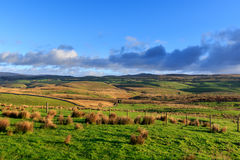 Yorkshire Dales. National Park, England Royalty Free Stock Photography