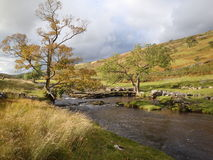 Yorkshire Dales National Park stream. Stream near Garsdale in Cumbria on the Yorkshire Dales National Park Royalty Free Stock Image
