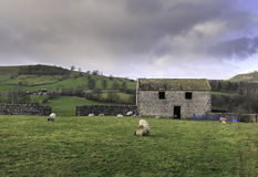 Yorkshire Dales. A rural view of the Yorkshire Dales National Park, England Royalty Free Stock Photography