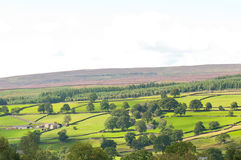 Yorkshire Dales View Stock Images