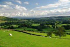 Yorkshire dalsikt Royaltyfri Bild