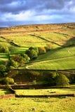 Yorkshire doliny Obrazy Stock
