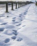 Yorkshire, England - die Landschaft und ein schneebedecktes Feld Stockfoto