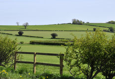Yorkshire farmland Royalty Free Stock Photography