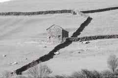 Yorkshire Field Landscape Stock Photo